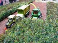 Dioramen Landwirtschaft