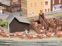 modellbau-team-koeln-us-04